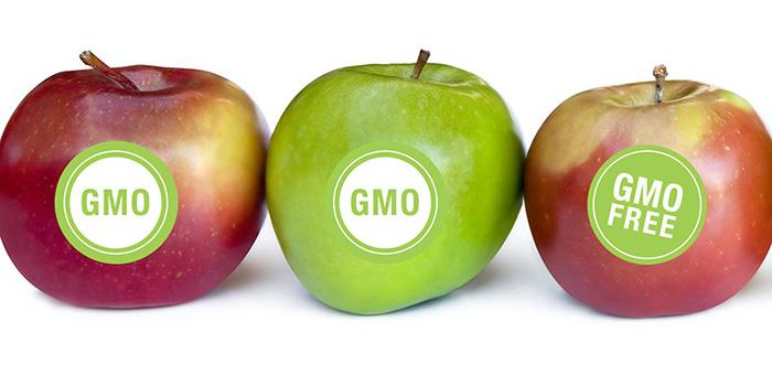 Considering GMOs